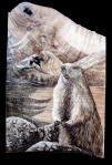 La Marmotte2