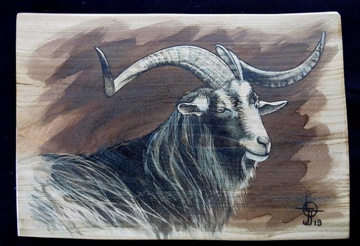 Peintures Animali 232 Res Brou B 202 Tes Amp Bois border=